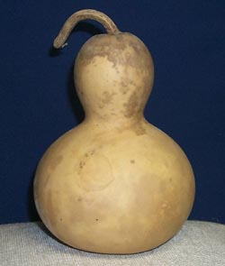 "Chinese Bottle Gourd (5-1/2"" - 7-1/2"" diameter) medium"