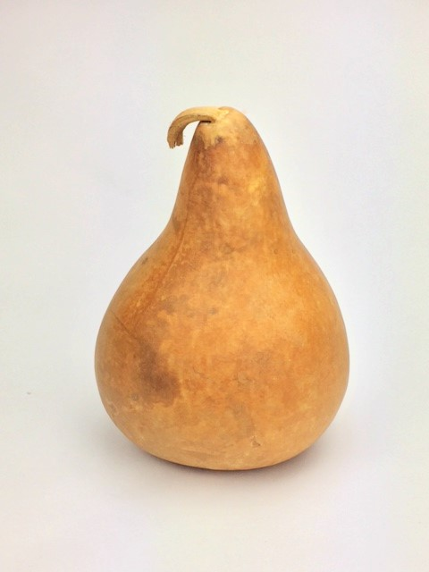 "Martin/Kettle Gourd 8"" diameter medium"
