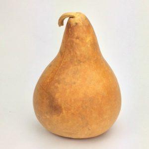 """Martin/Kettle Gourd 9"""" Diameter, blemished"""